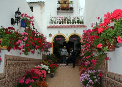 Visita Jurado Patios, Rincones y Balcones de Luque 2015 4