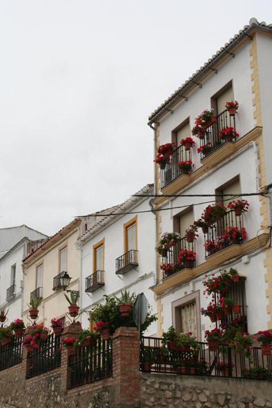 Visita Jurado Patios, Rincones y Balcones de Luque 2015 13