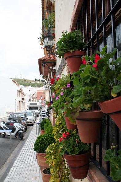 Visita Jurado Patios, Rincones y Balcones de Luque 2015 14