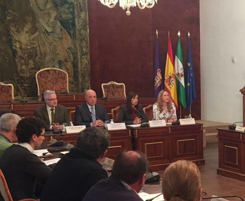 CONVENIO GESTIÓN DEL SERVICIO PROVINCIAL DE AYUDA A DOMICILIO 1